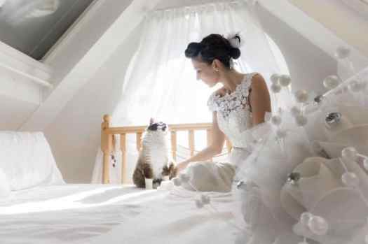Cats in Wedding Photoshoot Ideas by Marianna Zampieri