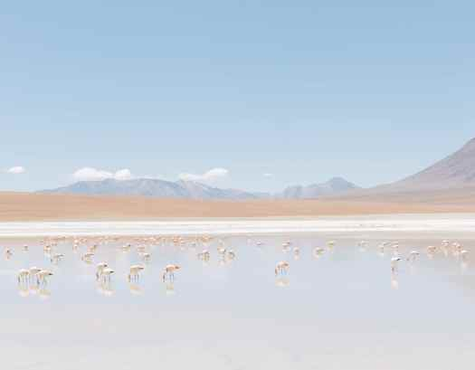 Bolivia Travel Photography by Kevin Faingnaert