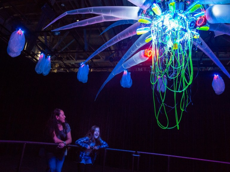 Shih Chieh Huang at the Exploratorium