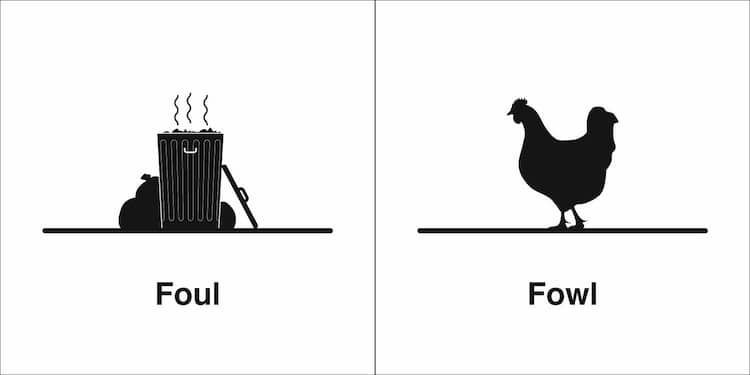 Clever Illustrations Of Words That Sound the Same in English