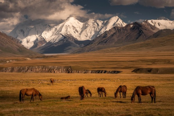 Stunning Of Kyrgyzstan And Untouched Landscape