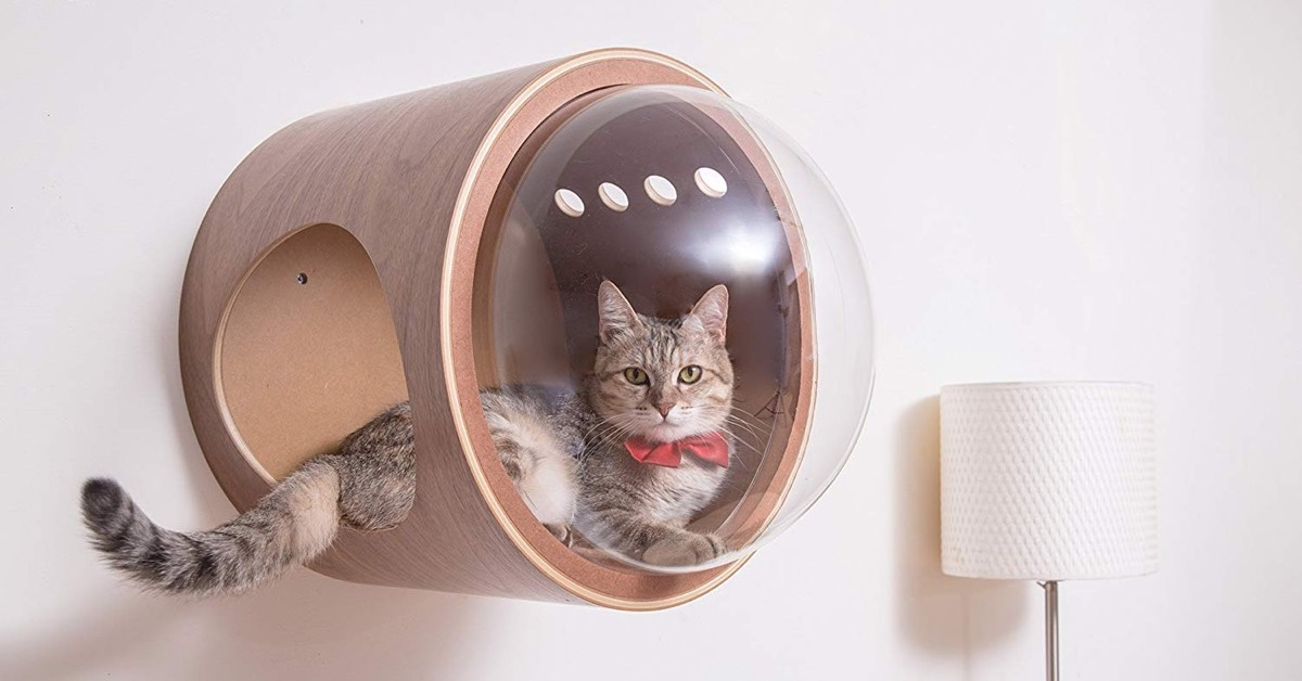 Spaceship Cat Bed Collection Turns Sleep Cats Into Space Explorers