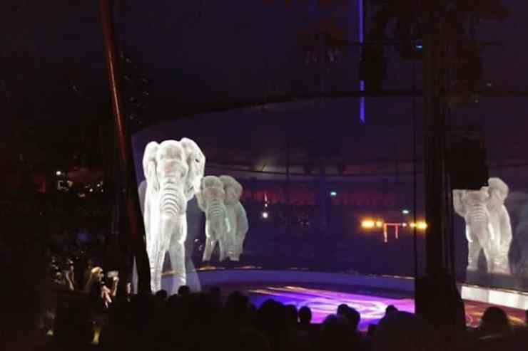 Image result for circus roncalli hologram