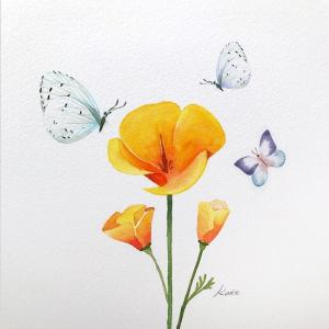 draw flower park kate flowers easy drawing korean step perfect illustrator steps builds washes delicate watercolor sure