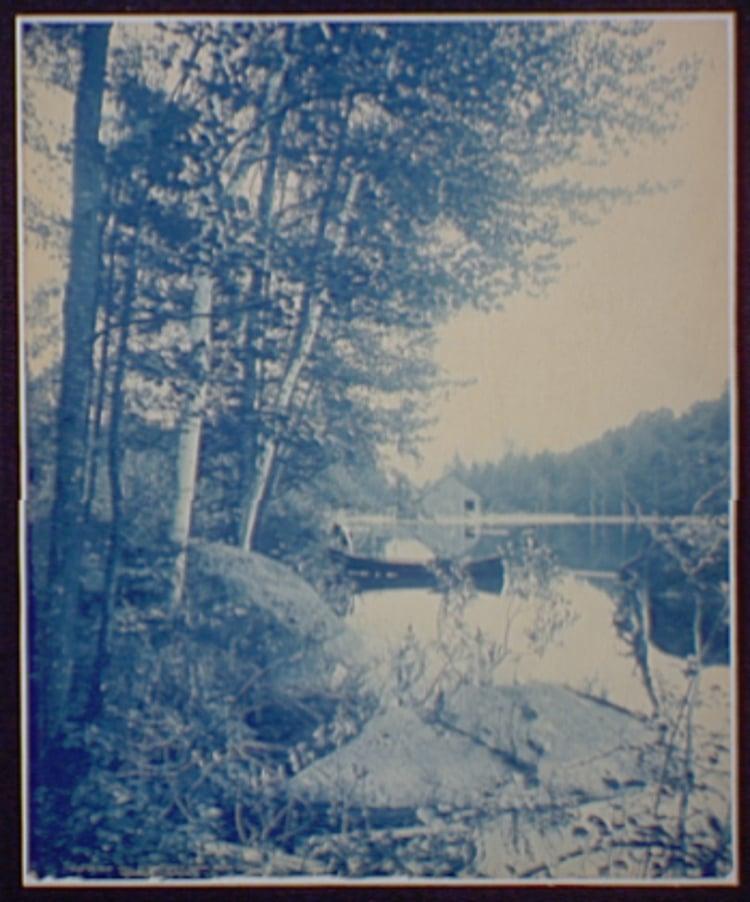 Adirondack Cyanotype