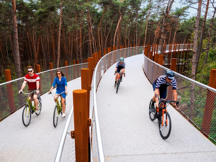 You Can Cycle Among the Tree Tops in This Raised Bike Path in a Belgian Forest