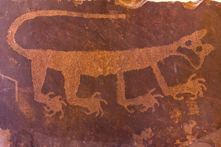 Petroglyph from Newspaper Rock in the Petrified Forest National Park