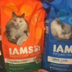 Iams Cat Food At Target