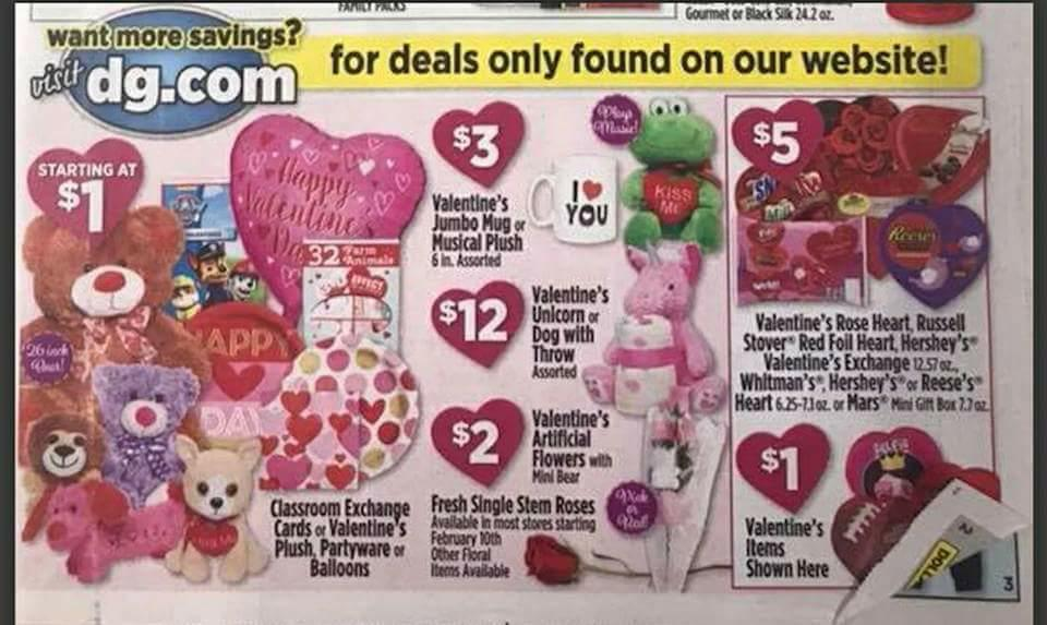 Dollar General Ad Scan Week 2 11 18 Page 1a