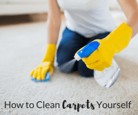 How to Clean Carpets Yourself | My Mommy World