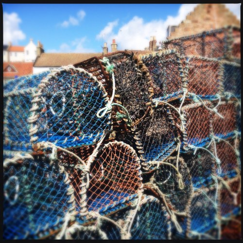 the lobster store, crail