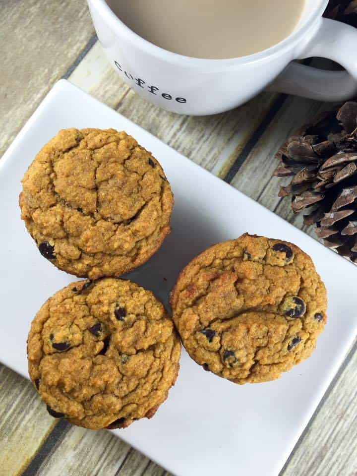 Pumpkin Chocolate Chip Muffin (THM-S, Sugar Free, Low Carb)