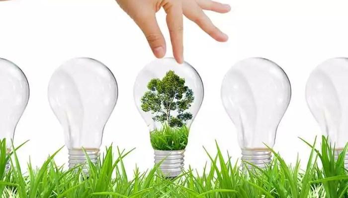 Энергетика растений – фитотерапия или лечение лекарственными растениями