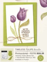 Timeless Tulips Punch Bundle