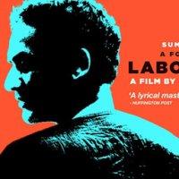 Asha Jaoar Majhe inspires the 'Labour of Love' for good cinema