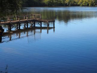 Tranquility of Daylesford Lake