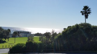The new sparkly surf club