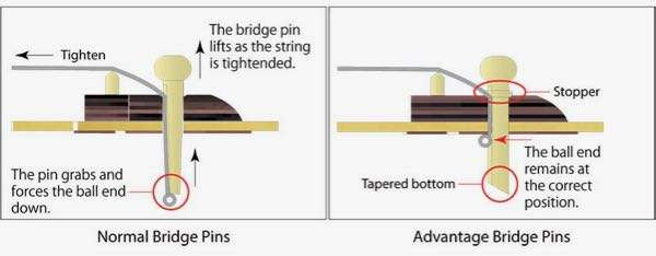 Ibanez Advantage pins