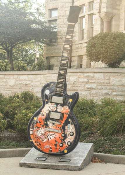 Tiger guitar