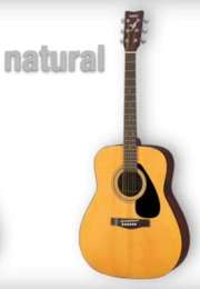 Yamaha F310 Acoustic Guitar: Pricey for a Beginner
