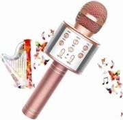 The Most Popular Karaoke Mics