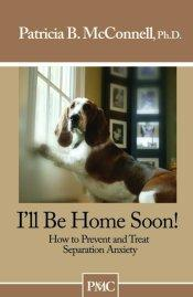 i-will-be-home-soon-patricia-mcconnell
