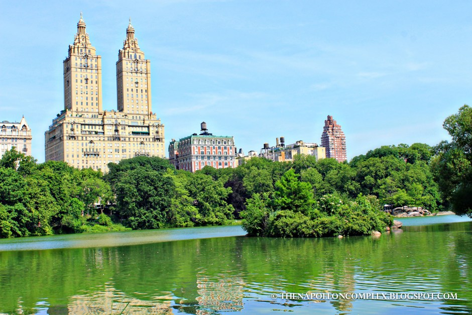 Picture of Central Park, NYC