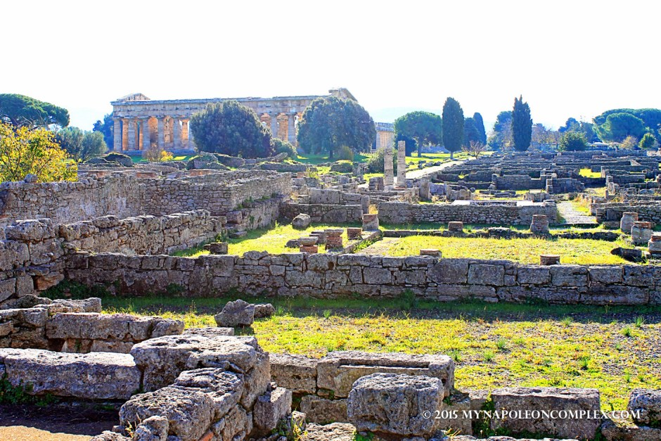 Picture of Paestum, Italy