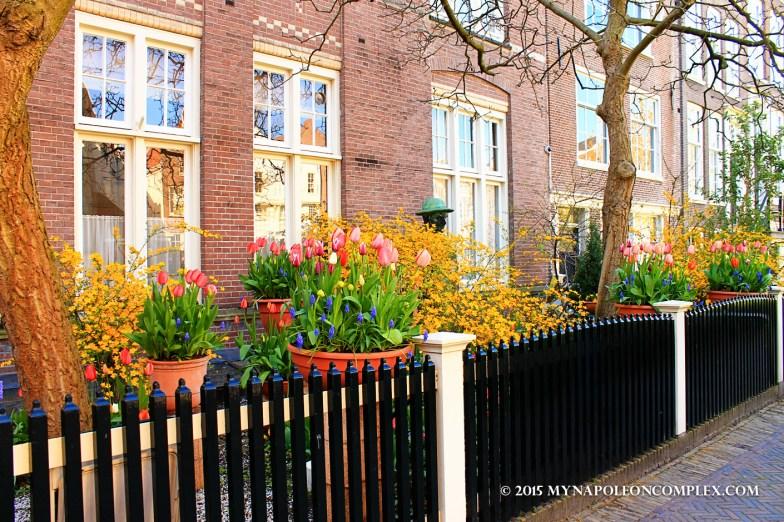 Picture of Begijnhof, Amsterdam