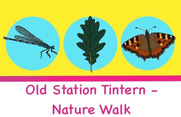 old station tintern nature walk