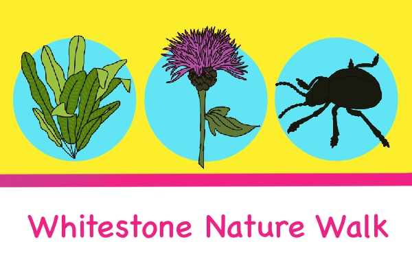 Whitestone nature walk