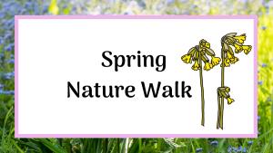 Spring nature walk
