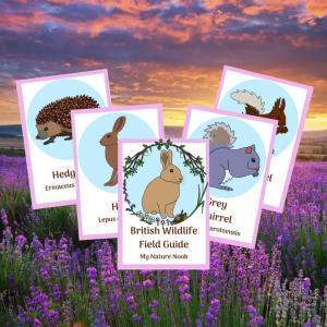 British Wildlife ID cards