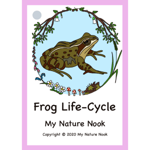 frog life-cycle flash cards
