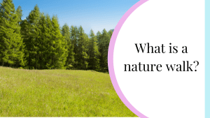 what is nature walk