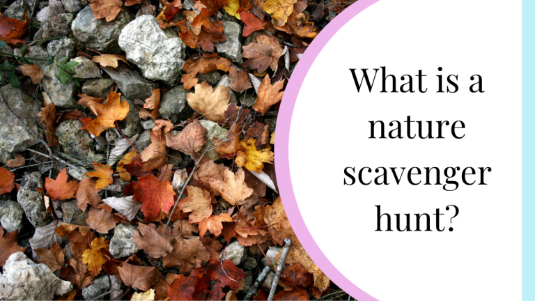 what is a nature scavenger hunt?