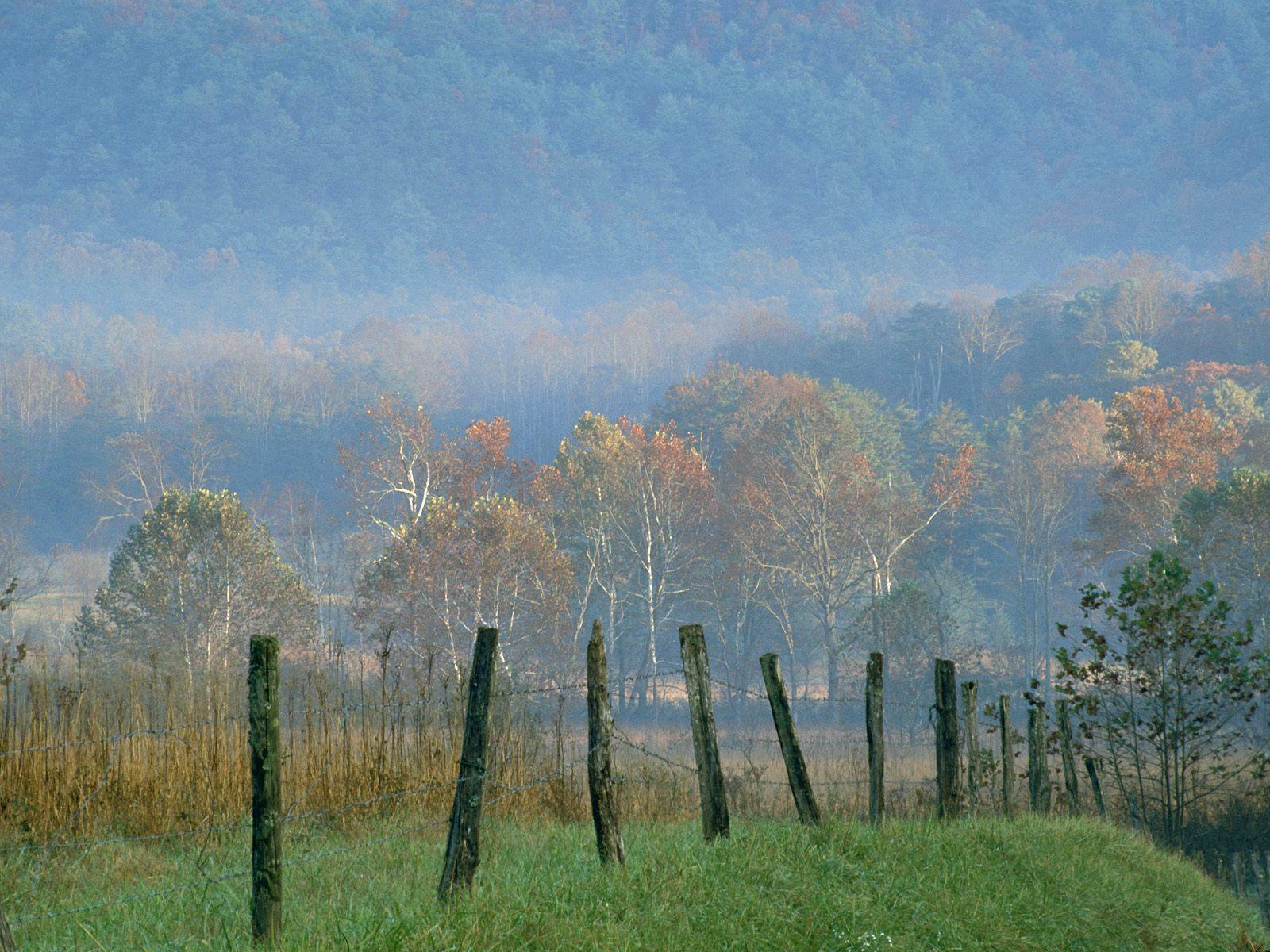 Fall Coastal Desktop Wallpaper Cades Cove Great Smoky Mountains National Park Nature