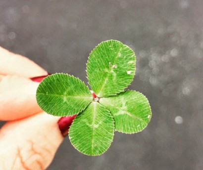 It's Not All About Luck; It's About You!
