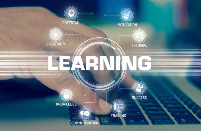 What is the Best Brain Training Program?