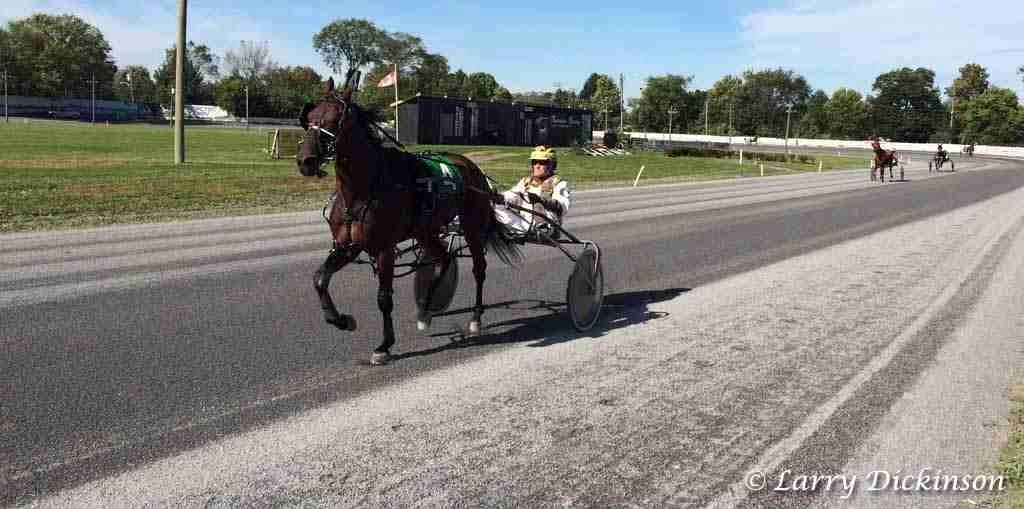 Fredericton Raceway
