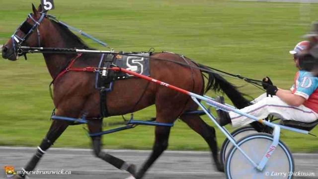 fton raceway 2015b
