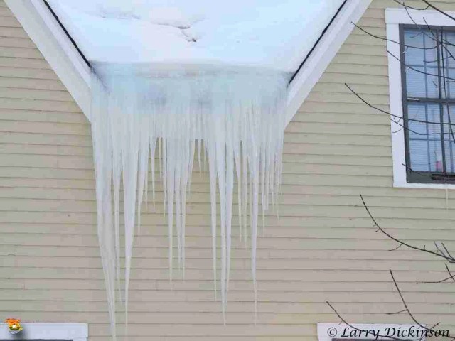 Icicles  07