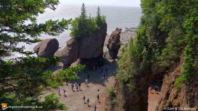hopewell rocks 009