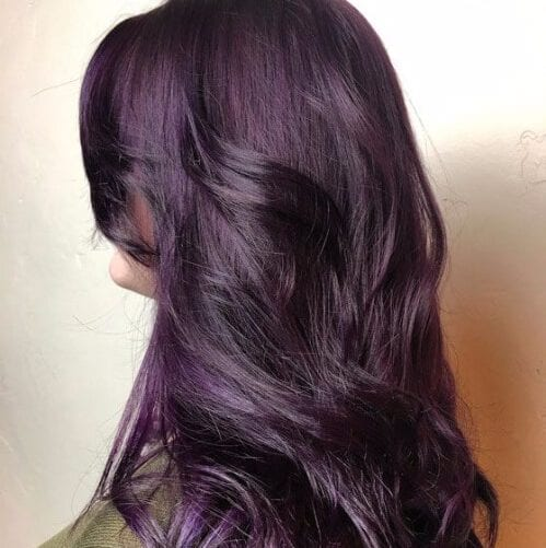 dark iris plum hair color