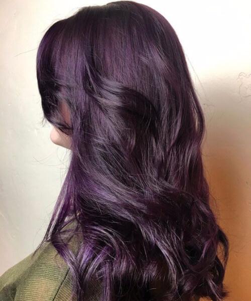 dark iris plum hair color