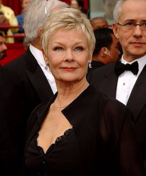 judi dench hairstyles for women over 60
