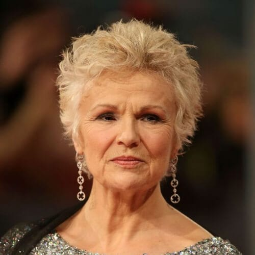 julie walters short haircuts for fine hair