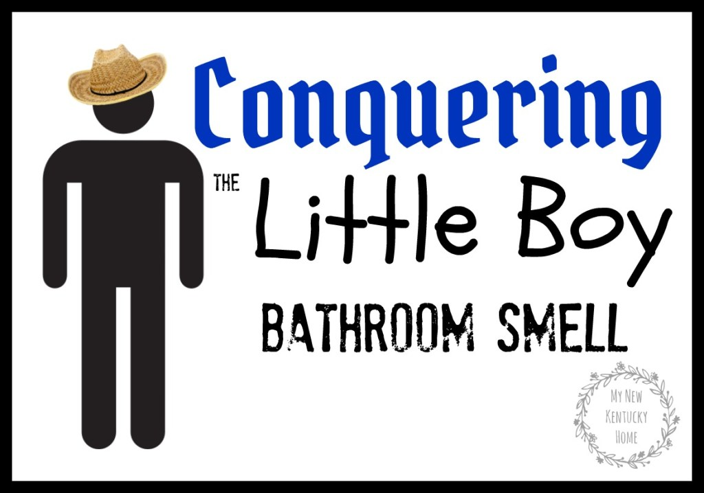 Conquering the Little Boy Bathroom Smell