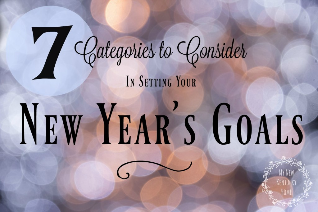 7 Categories to Consider in Setting Your New Year's Goals