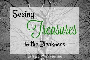 Seeing Treasures in the Bleakness